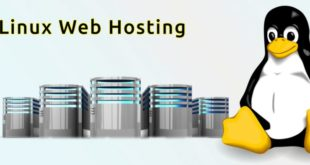 Why Linux VPS is a good option to host your website